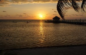 Tax Benefits Belize